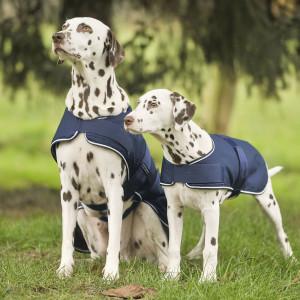 Coperta impermeabili per cani